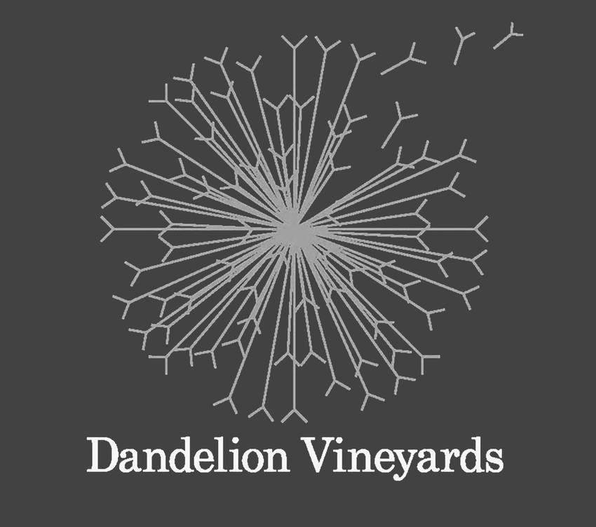 2009 Dandelion Vineyards Red Queen Of The Eden Valley Shiraz