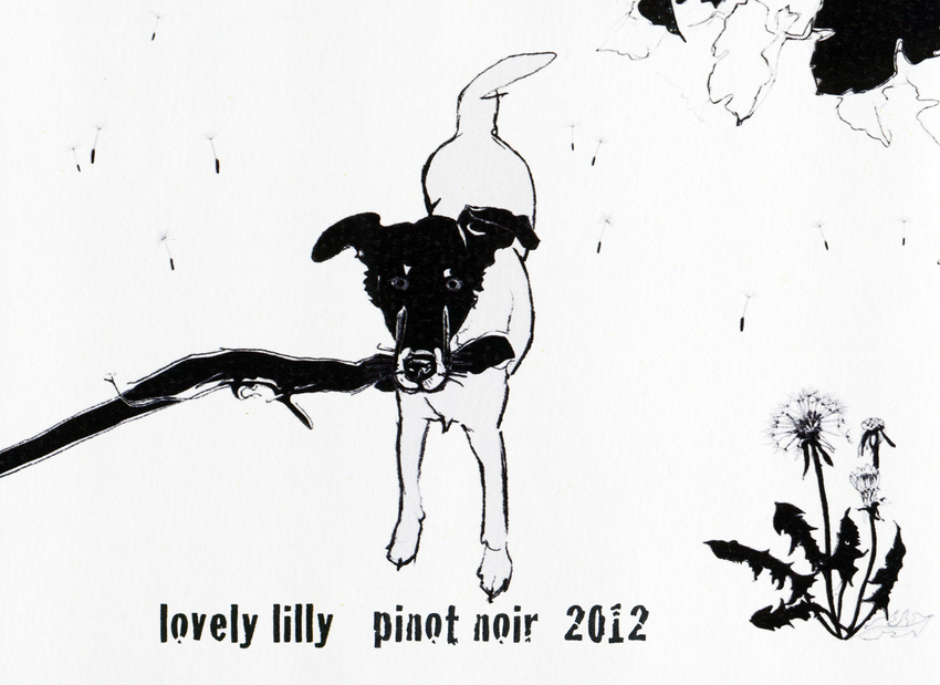 2012 Shelter Pinot Noir Lovely Lilly