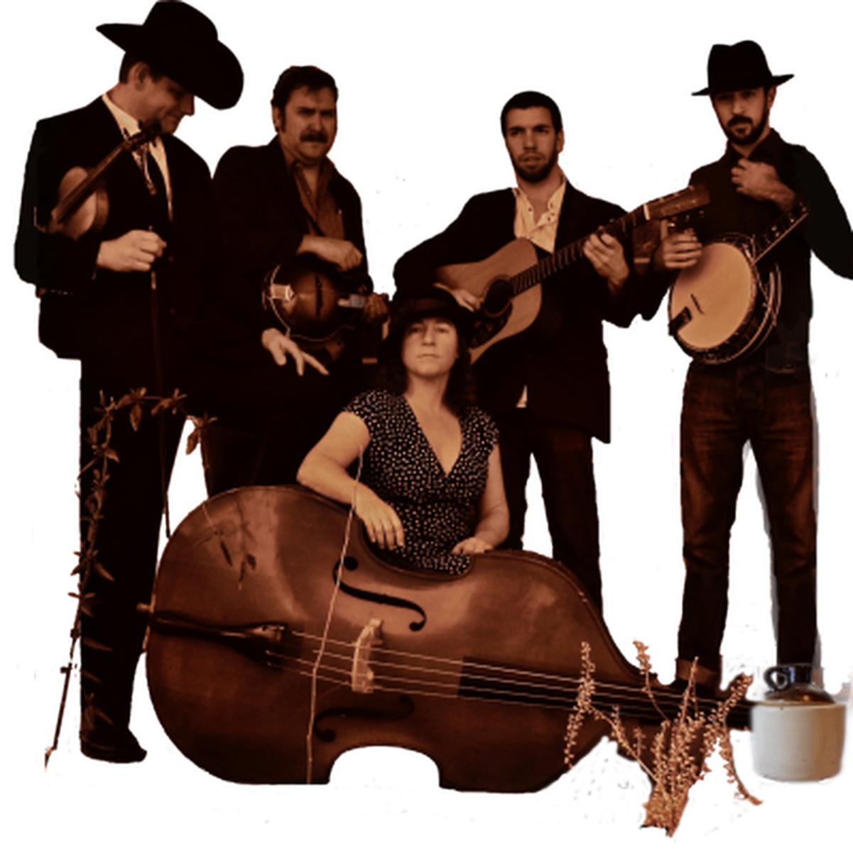 Johnny Campbell & The Bluegrass Drifters