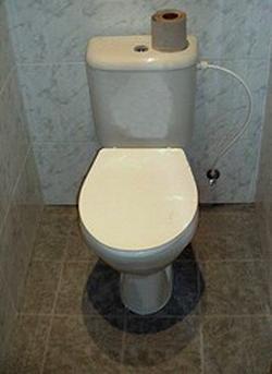 Toilet wiki, Toilet review, Toilet news