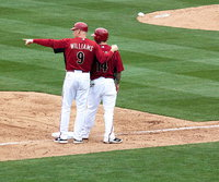Matt Williams (baseball) wiki, Matt Williams (baseball) history, Matt Williams (baseball) news