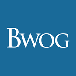 Bwog wiki, Bwog review, Bwog history, Bwog news