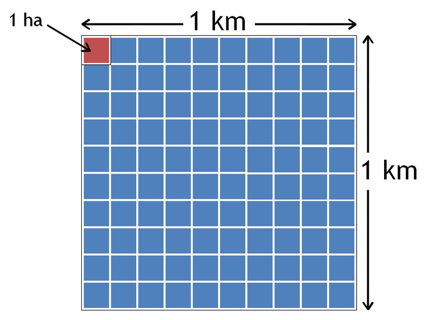 Kilómetro cuadrado