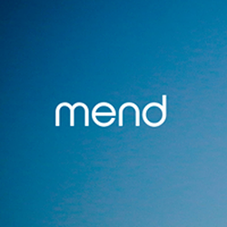 Mend wiki, Mend review, Mend history, Mend news