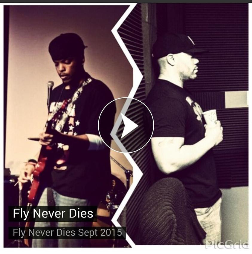 Fly Never Dies