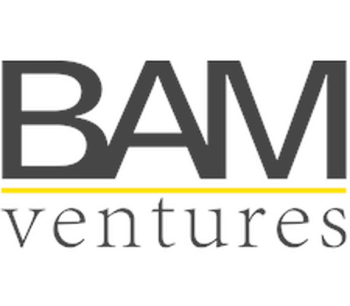 Image result for bam ventures logo