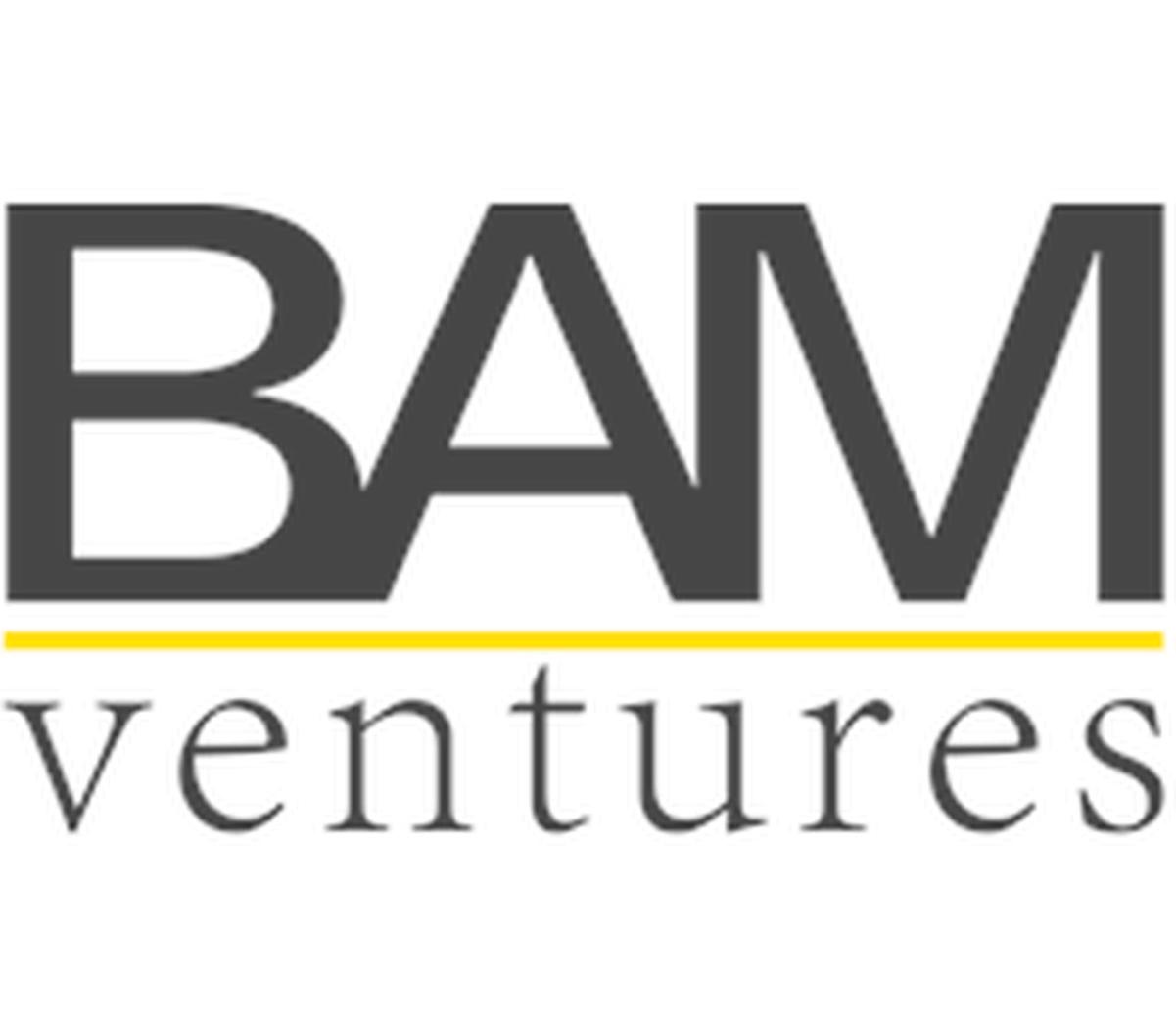 Image result for bam ventures logo