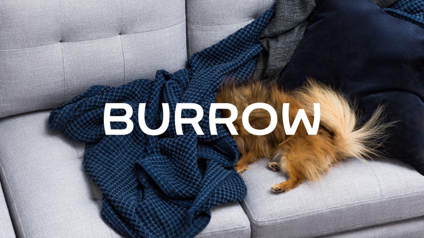 Burrow Sofa