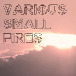 Various Small Fires wiki, Various Small Fires review, Various Small Fires history, Various Small Fires news