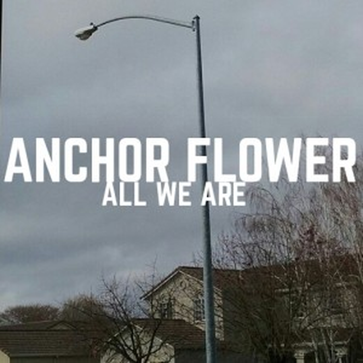 Anchor Flower