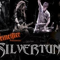 Silvertung wiki, Silvertung review, Silvertung history, Silvertung news