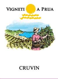 Vigneti A Prua Cruvin 2013
