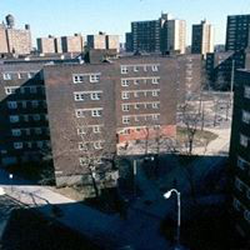 Brownsville, Brooklyn NY wiki, Brownsville, Brooklyn NY history, Brownsville, Brooklyn NY news