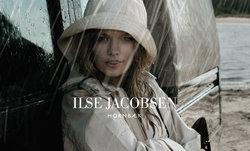 Ilse Jacobsen wiki, Ilse Jacobsen review, Ilse Jacobsen history, Ilse Jacobsen news